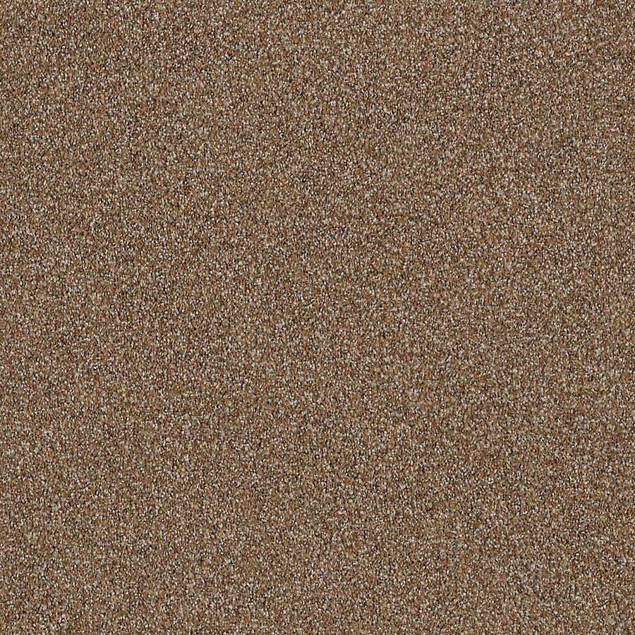 STAINMASTER LiveWell Robust I Rustic Charm Carpet Sample