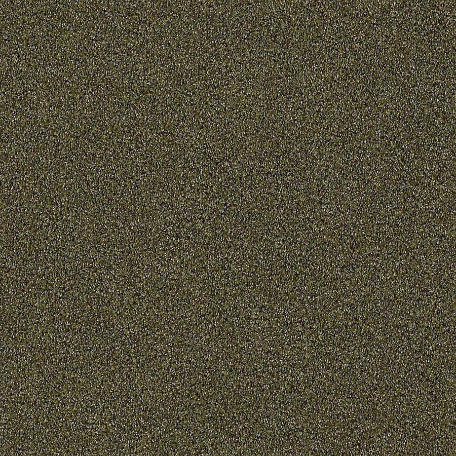 STAINMASTER LiveWell Robust I Safari Carpet Sample