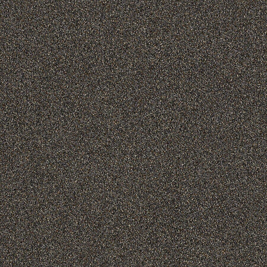 STAINMASTER LiveWell Robust I Metropolitan Carpet Sample
