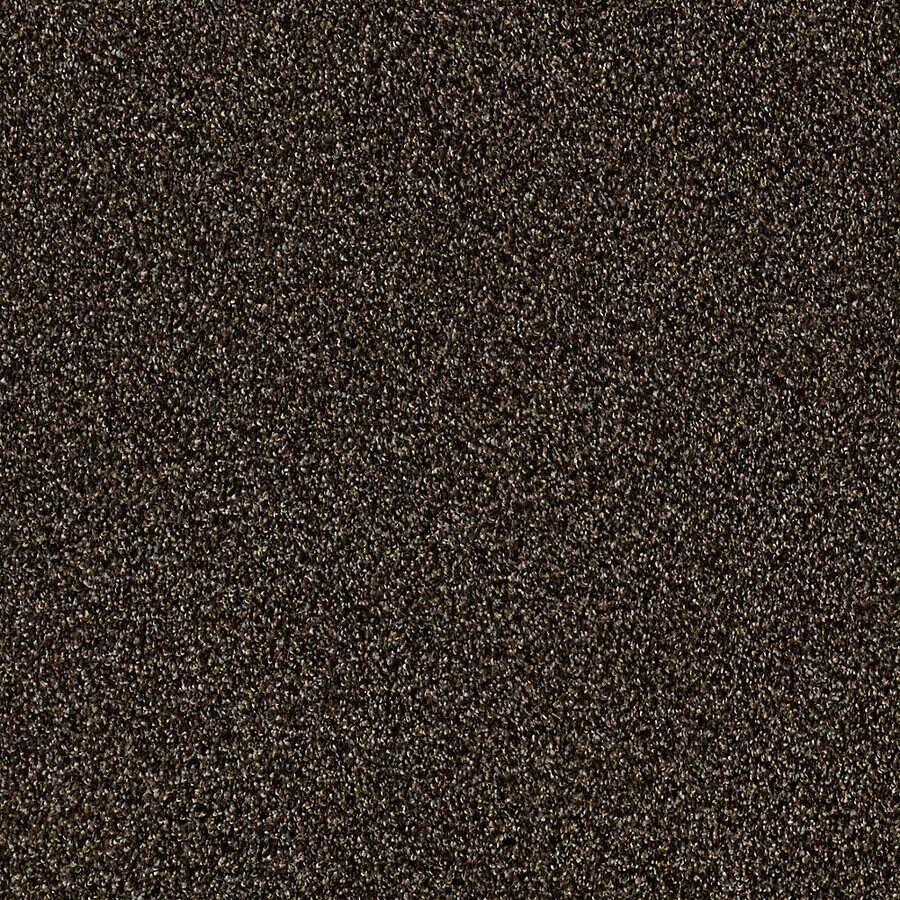 STAINMASTER LiveWell Robust I Buckeye Carpet Sample