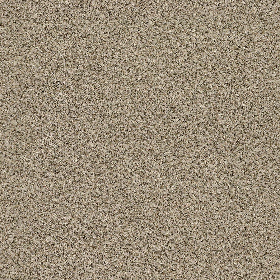 STAINMASTER LiveWell Robust II Oatmeal Carpet Sample