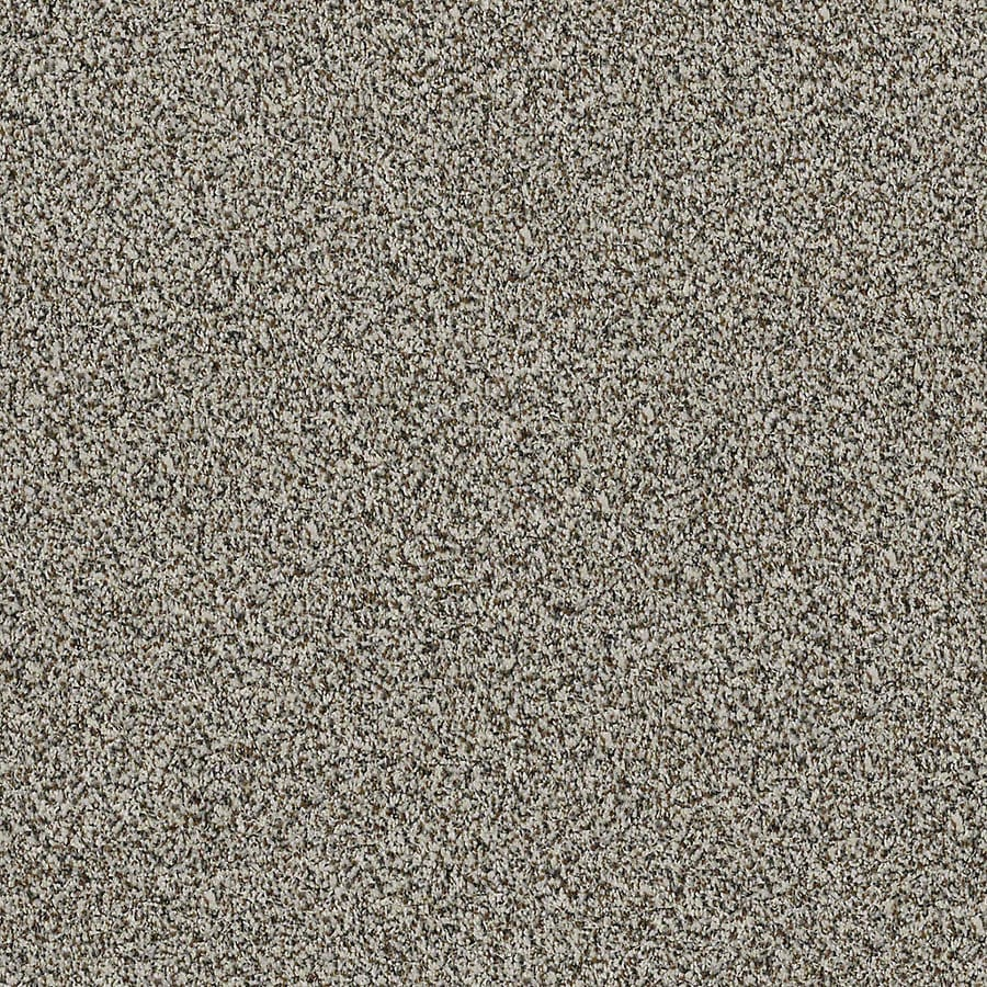 STAINMASTER LiveWell Robust II City Loft Carpet Sample