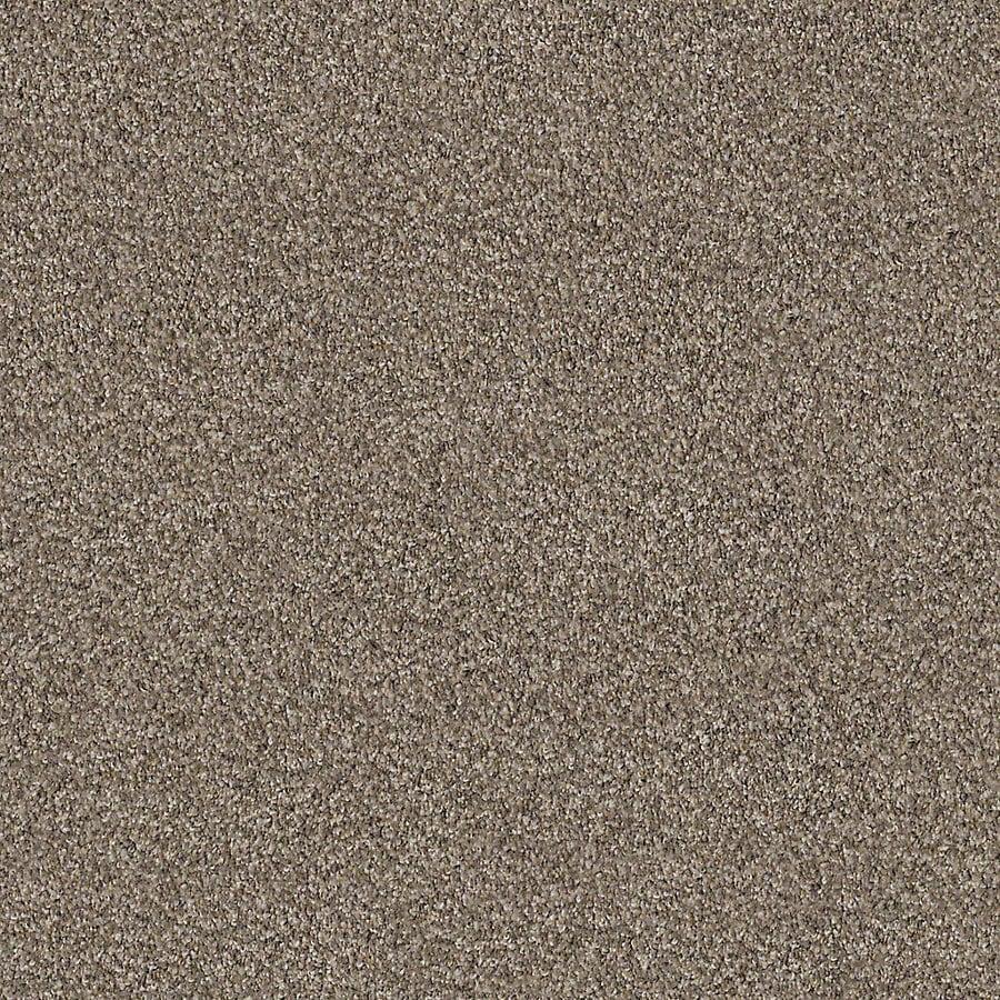 STAINMASTER LiveWell Robust II Granite Carpet Sample