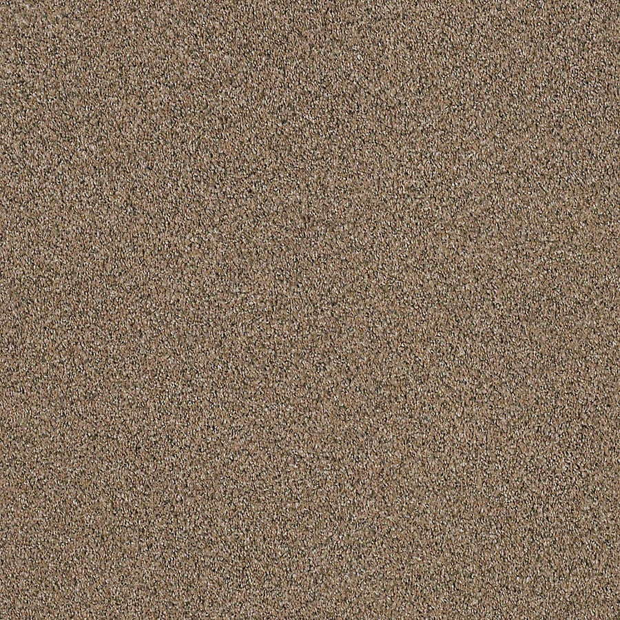 STAINMASTER LiveWell Robust II Retreat Carpet Sample