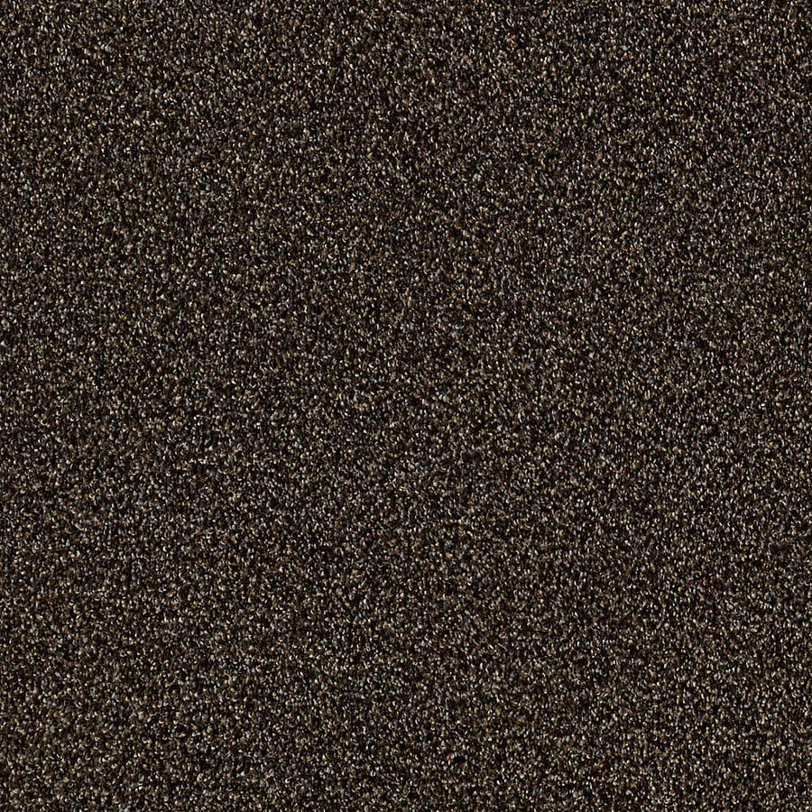 STAINMASTER LiveWell Robust II Buckeye Carpet Sample