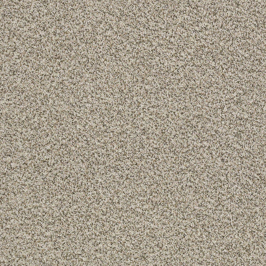 STAINMASTER LiveWell Robust III Inspired Carpet Sample