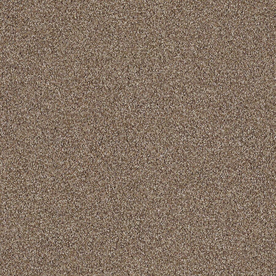 STAINMASTER LiveWell Robust III Peaceful Carpet Sample