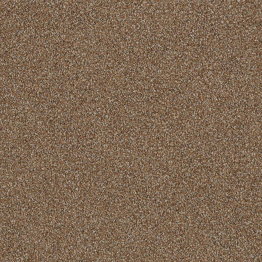 STAINMASTER LiveWell Robust III Rustic Charm Carpet Sample