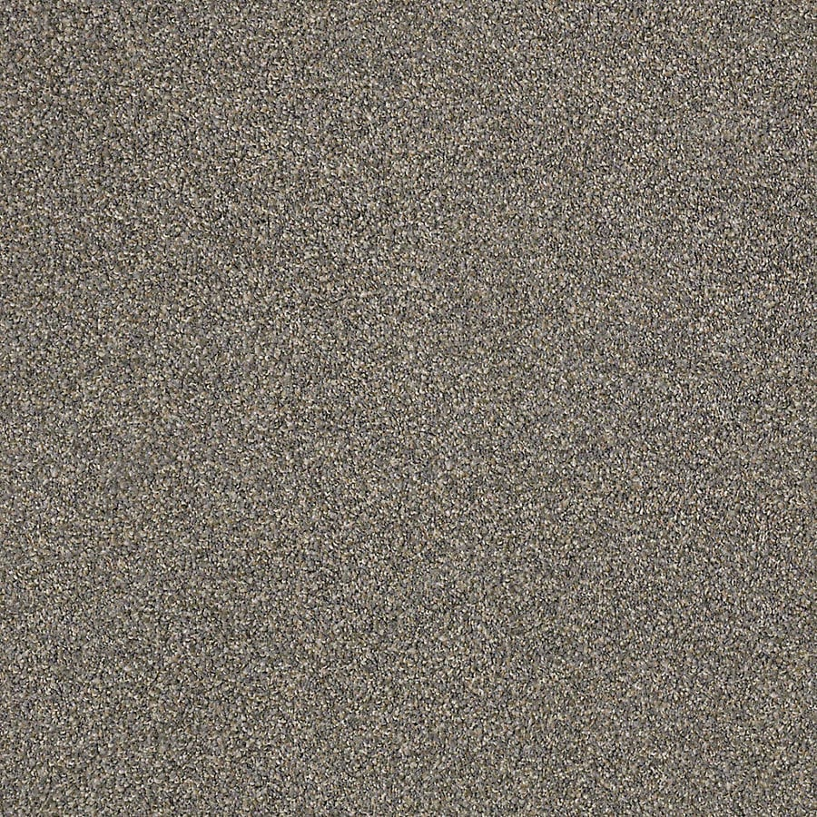 STAINMASTER LiveWell Robust III Thunder Carpet Sample