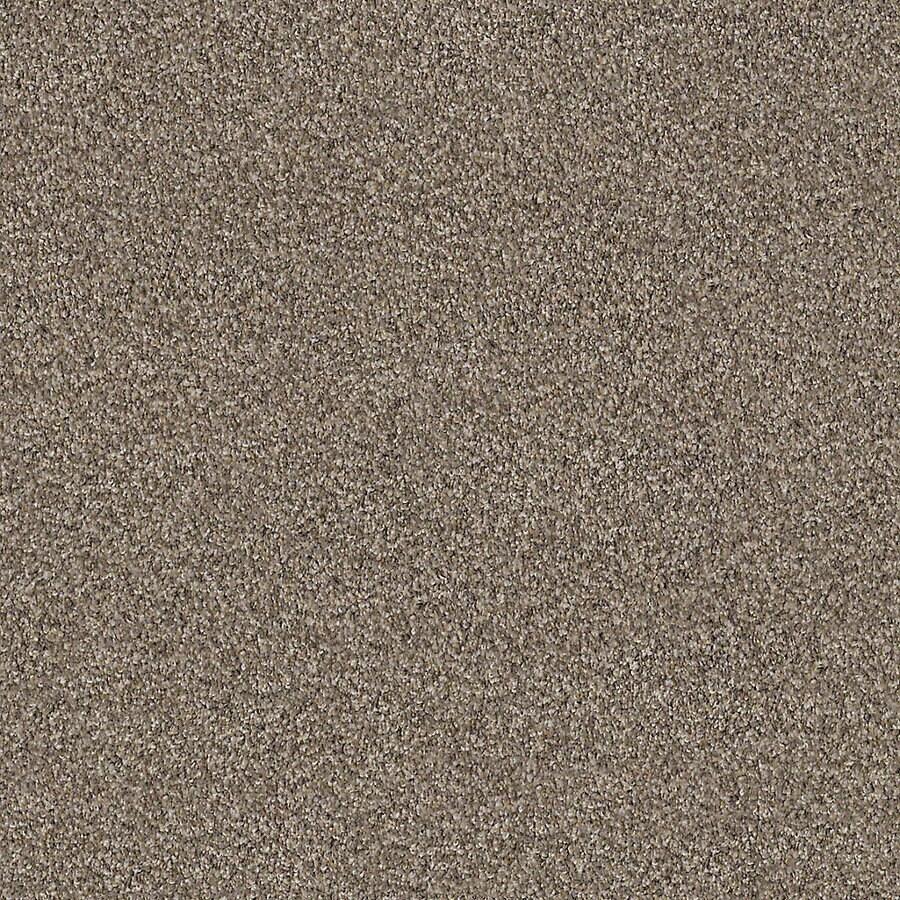 STAINMASTER LiveWell Robust III Granite Carpet Sample