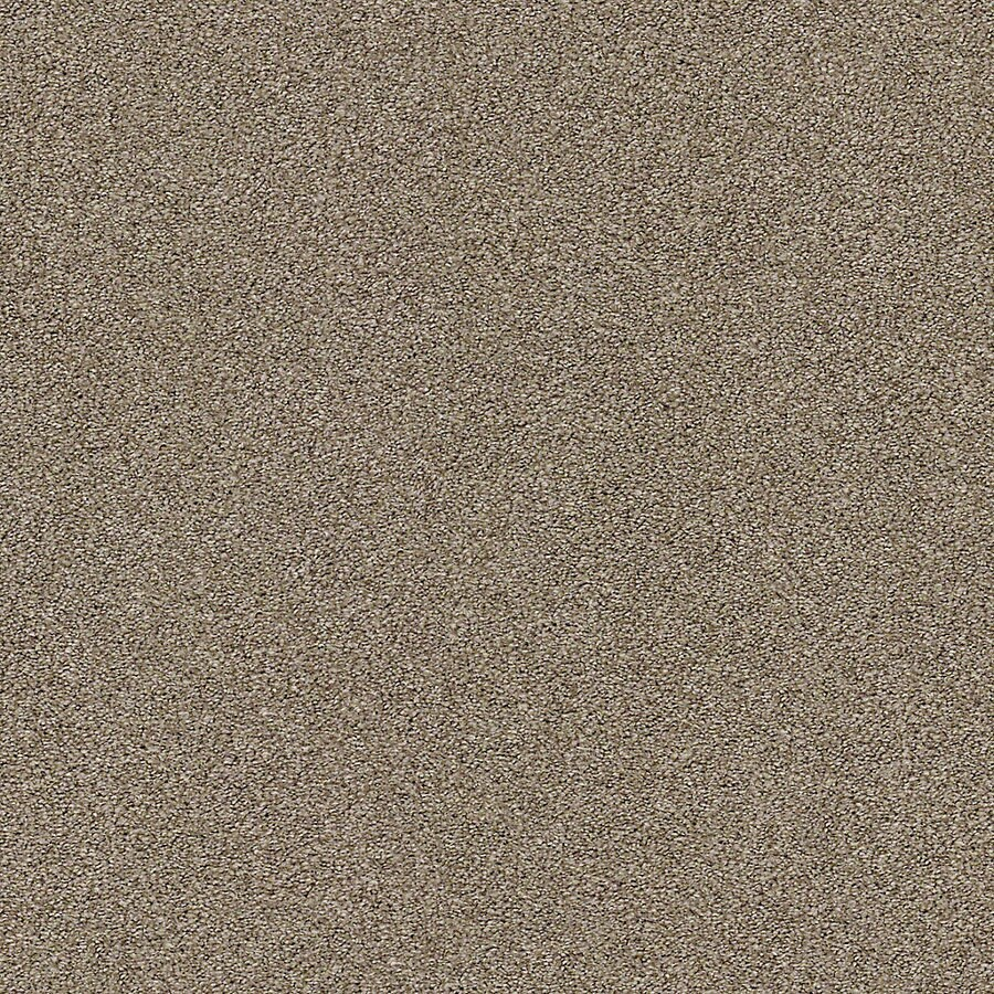 STAINMASTER LiveWell Breathe Easy I Racoon Hollow Carpet Sample