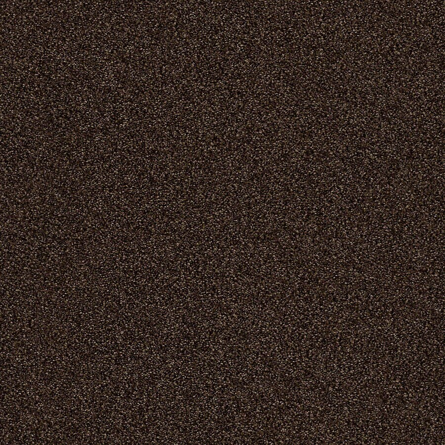 STAINMASTER LiveWell Breathe Easy II Masculine Mood Carpet Sample