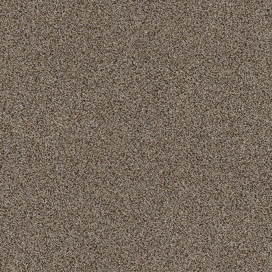 STAINMASTER LiveWell Vigorous I Clove Carpet Sample