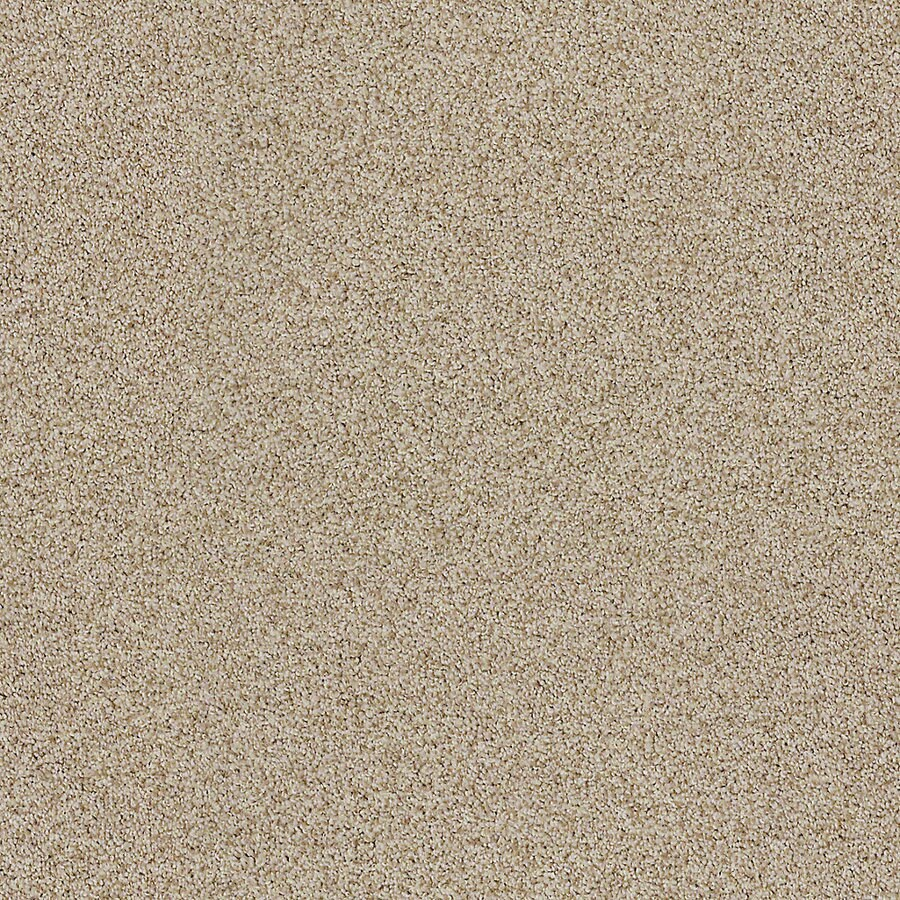 STAINMASTER LiveWell Vigorous II Cookie Carpet Sample