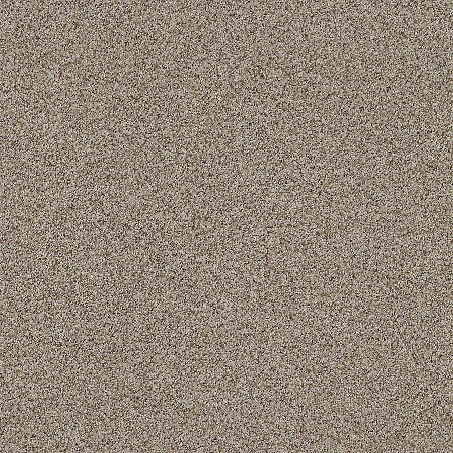 STAINMASTER LiveWell Vigorous II Longhorn Carpet Sample