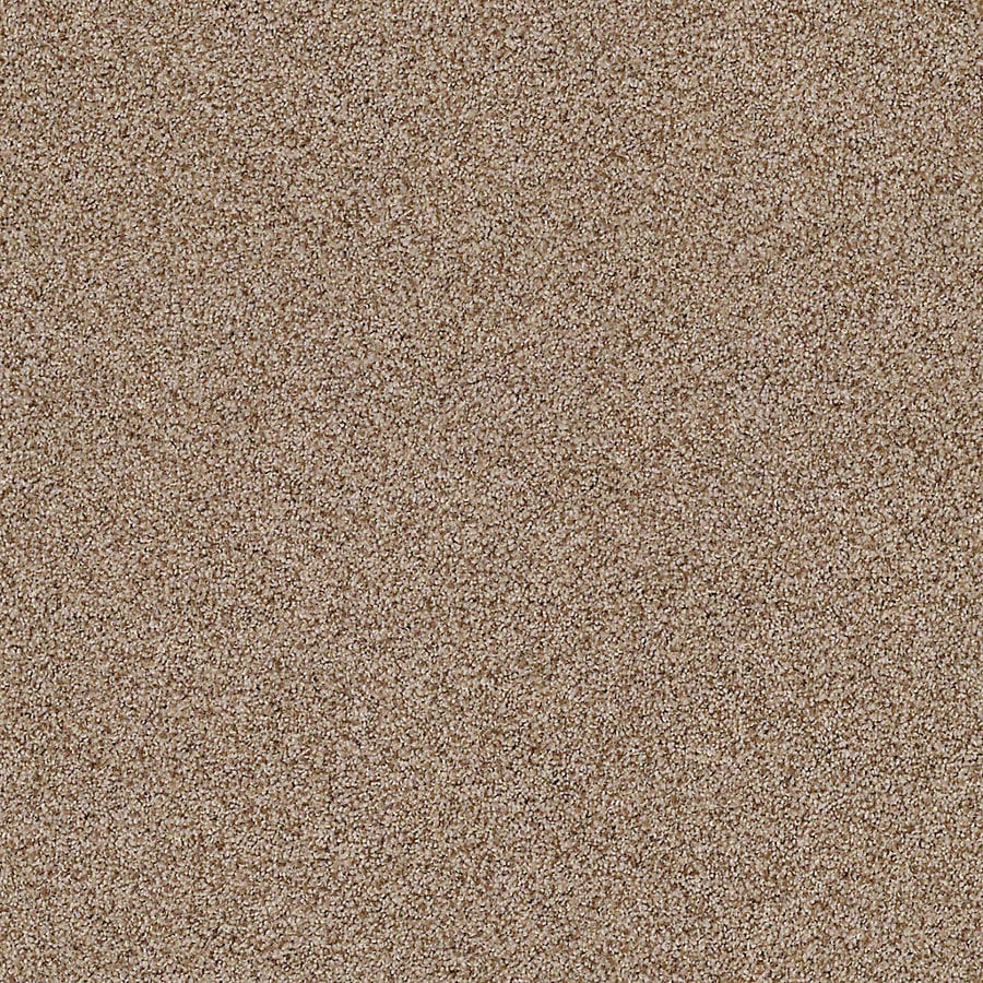 STAINMASTER LiveWell Vigorous II Sable Carpet Sample