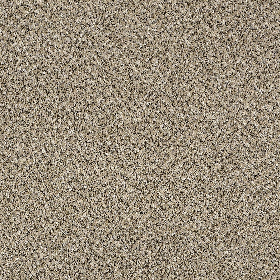 STAINMASTER Essentials Palacial I Sea Shell Carpet Sample