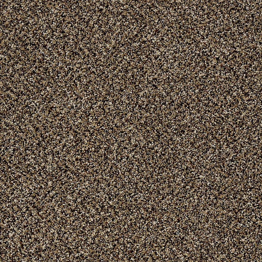 STAINMASTER Essentials Palacial I Sandpiper Carpet Sample