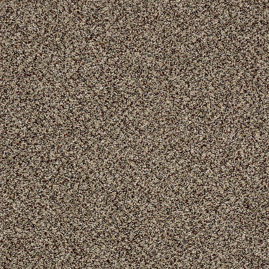 STAINMASTER Essentials Palacial I Worn Path Carpet Sample