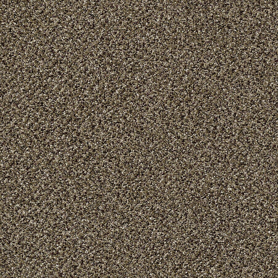 STAINMASTER Essentials Palacial I Pinecone Carpet Sample