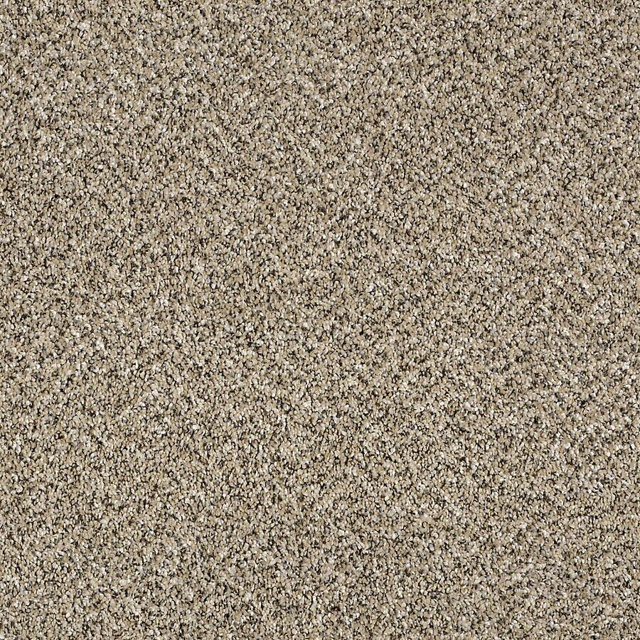 STAINMASTER Essentials Palacial II Sea Shell Carpet Sample