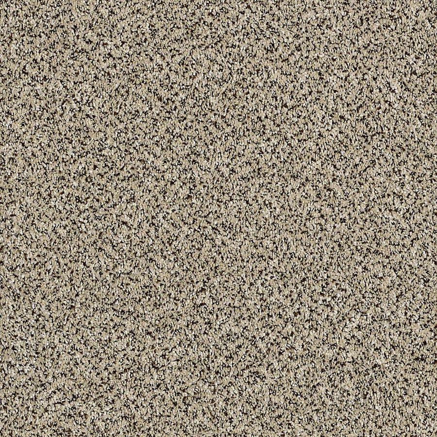 STAINMASTER Essentials Palacial II Ivory Coast Carpet Sample