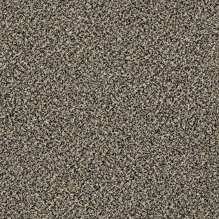 STAINMASTER Essentials Palacial II Muffintop Carpet Sample