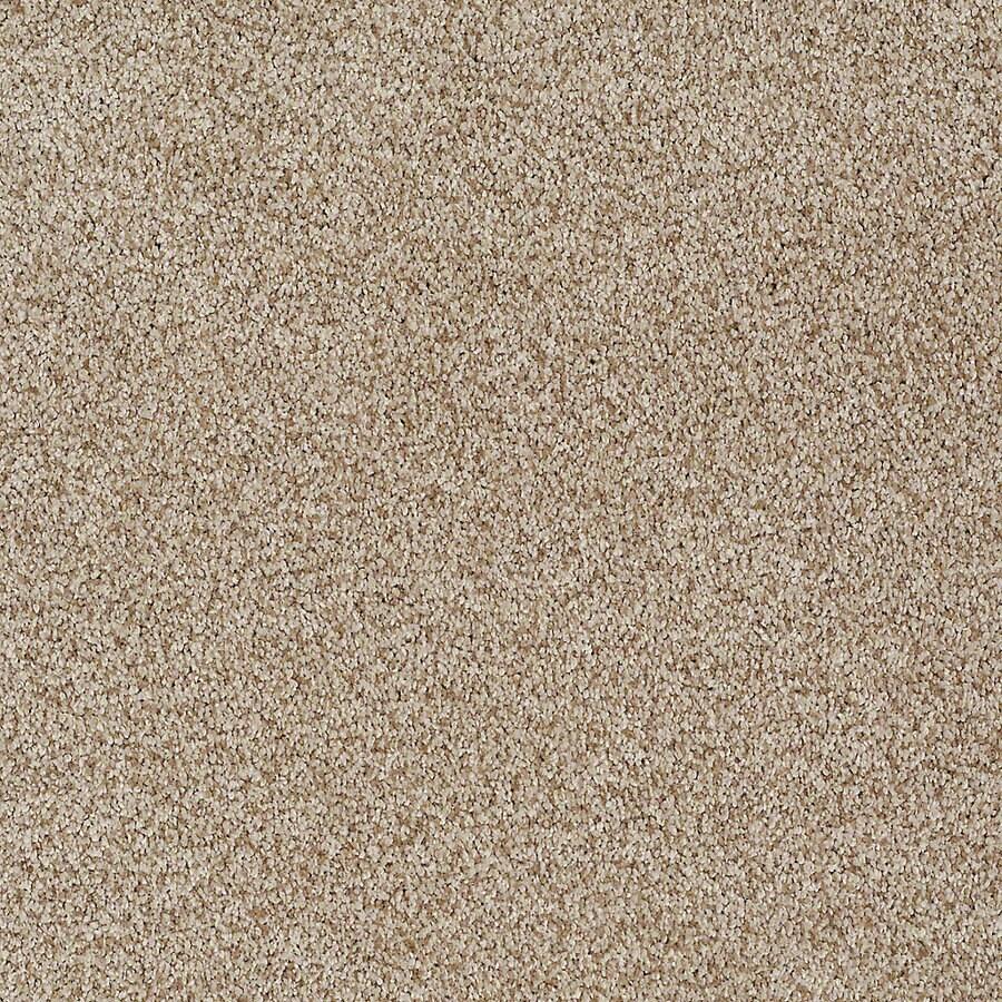 STAINMASTER TruSoft Advanced Beauty I Raffia Carpet Sample