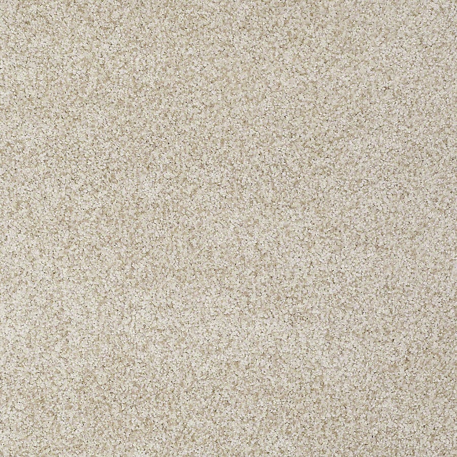 STAINMASTER TruSoft Advanced Beauty I Nutria Carpet Sample