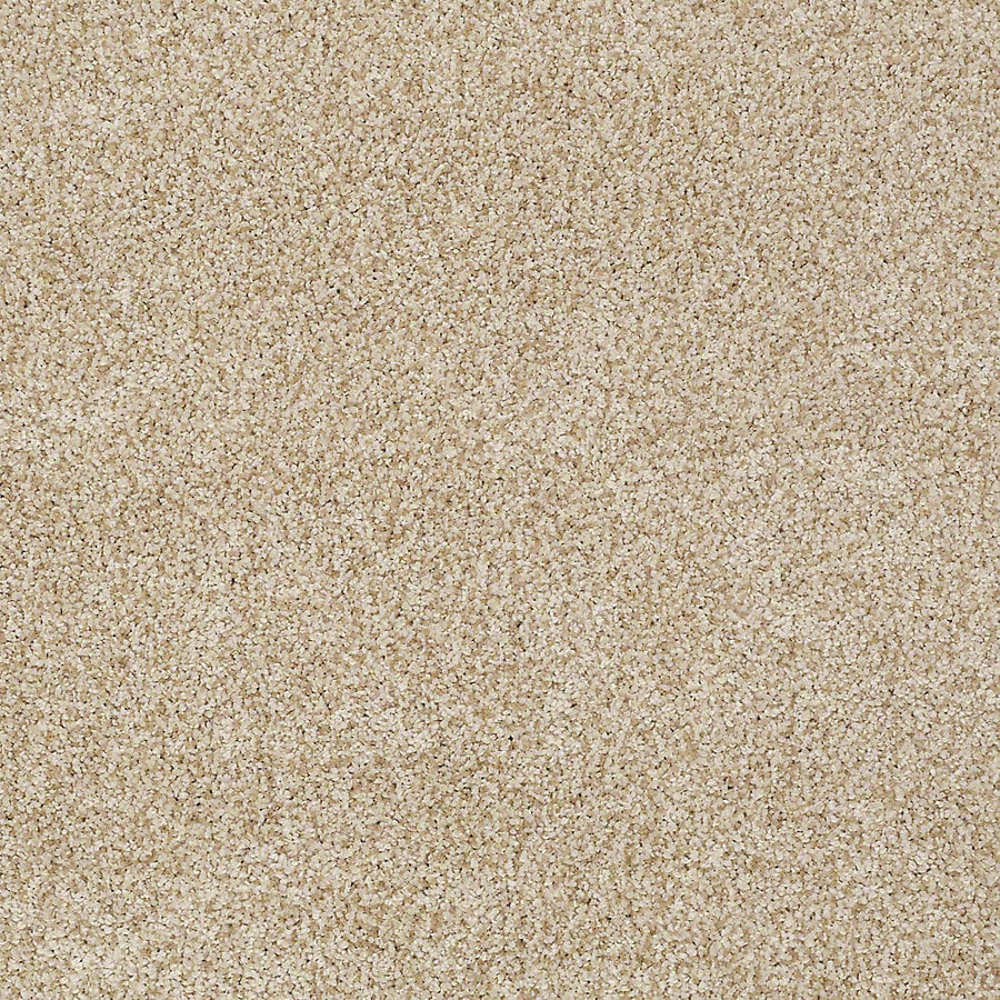 STAINMASTER TruSoft Advanced Beauty I Parchment Carpet Sample