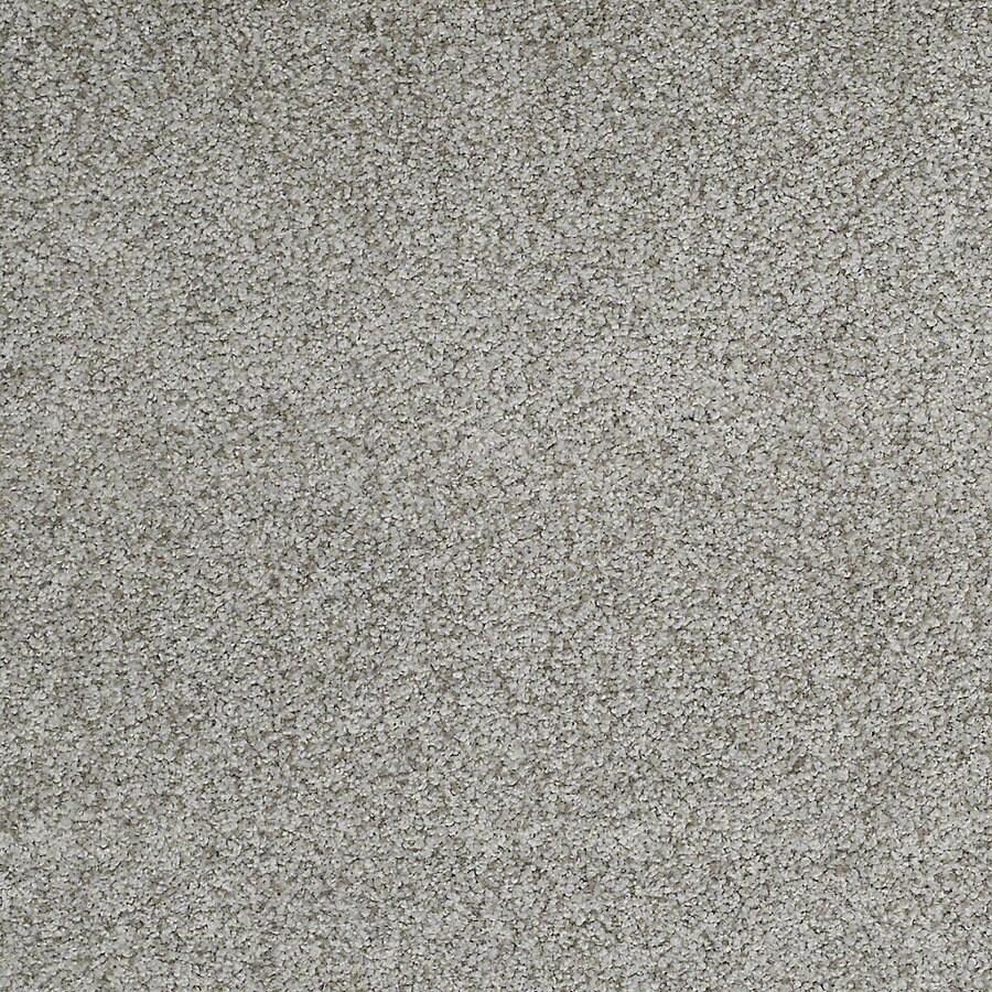 STAINMASTER TruSoft Advanced Beauty I Medallion Carpet Sample