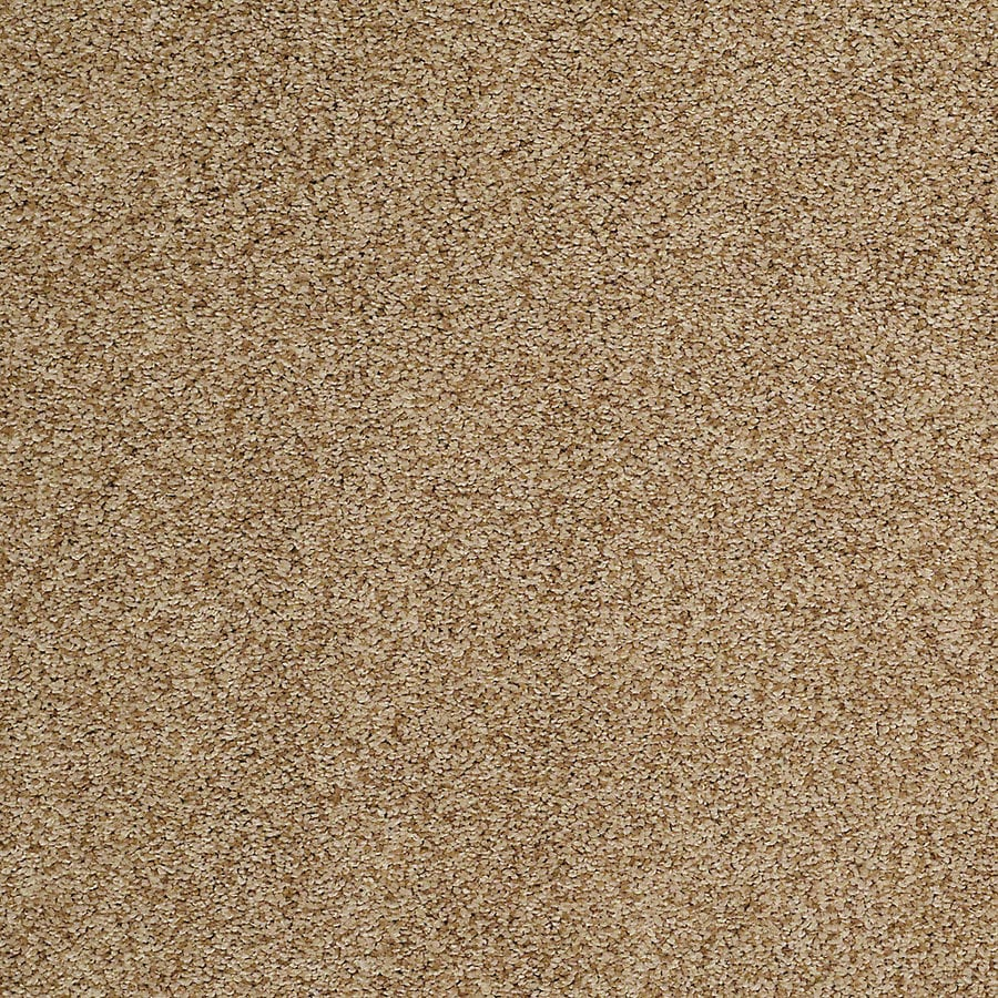 STAINMASTER TruSoft Advanced Beauty I Pier Carpet Sample