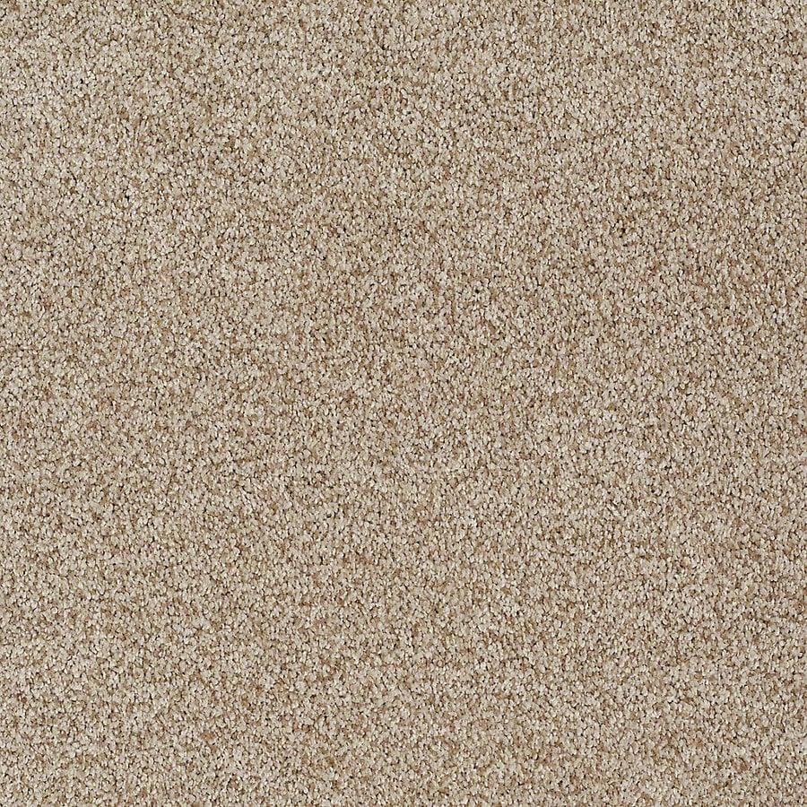 STAINMASTER TruSoft Advanced Beauty II Raffia Carpet Sample