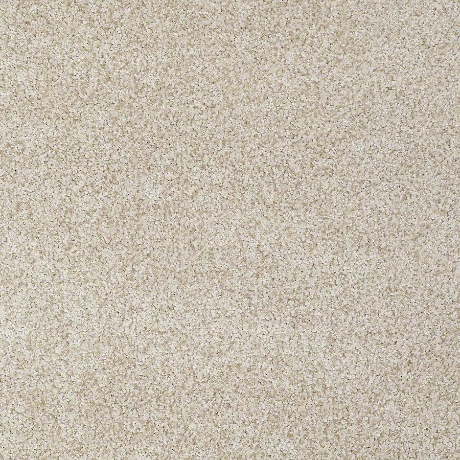 STAINMASTER TruSoft Advanced Beauty II Nutria Carpet Sample