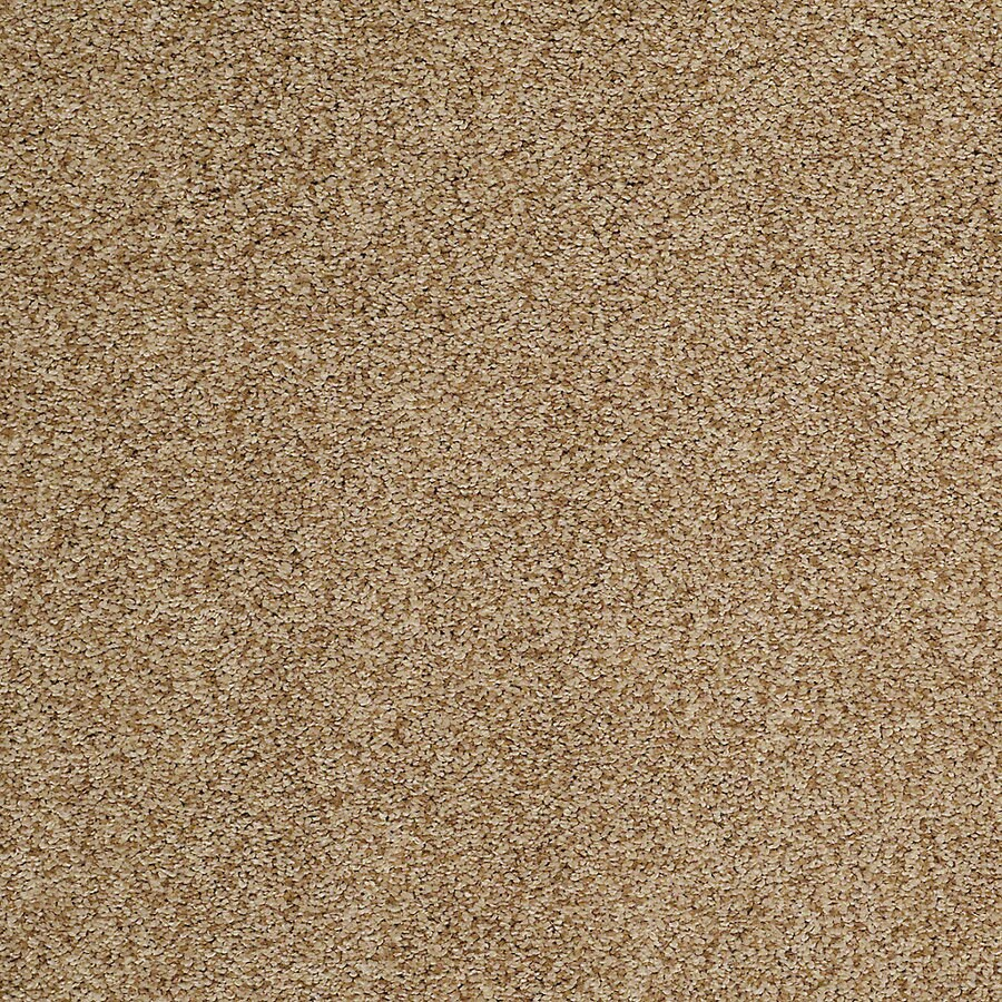 STAINMASTER TruSoft Advanced Beauty II Pier Carpet Sample