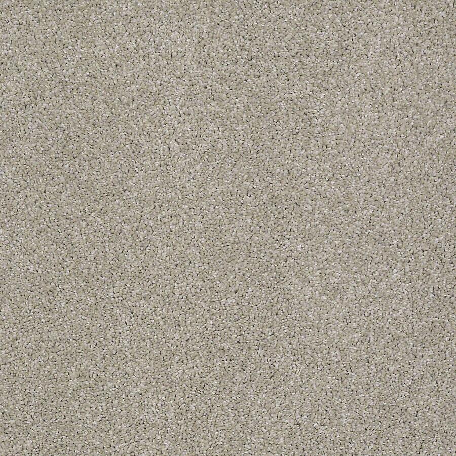 STAINMASTER PetProtect Bark to the Future I Gentle Breeze Carpet Sample