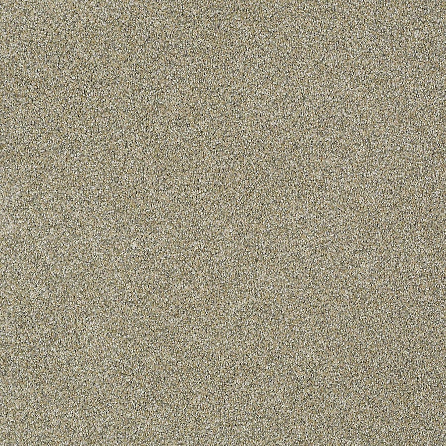 STAINMASTER PetProtect Bark to the Future I Sands of Time Carpet Sample