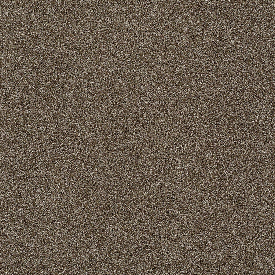 STAINMASTER PetProtect Bark to the Future I Derby Carpet Sample