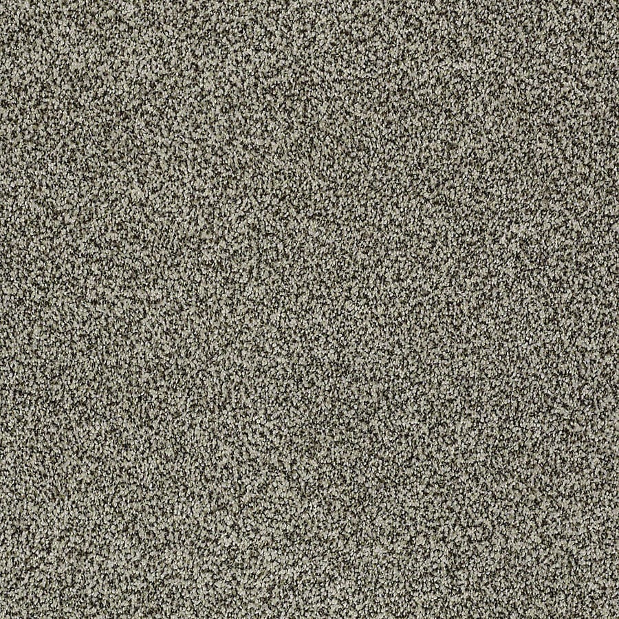 STAINMASTER PetProtect Bark to the Future II Drifter Carpet Sample