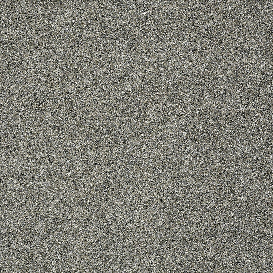 STAINMASTER PetProtect Bark to the Future II Windy City Carpet Sample
