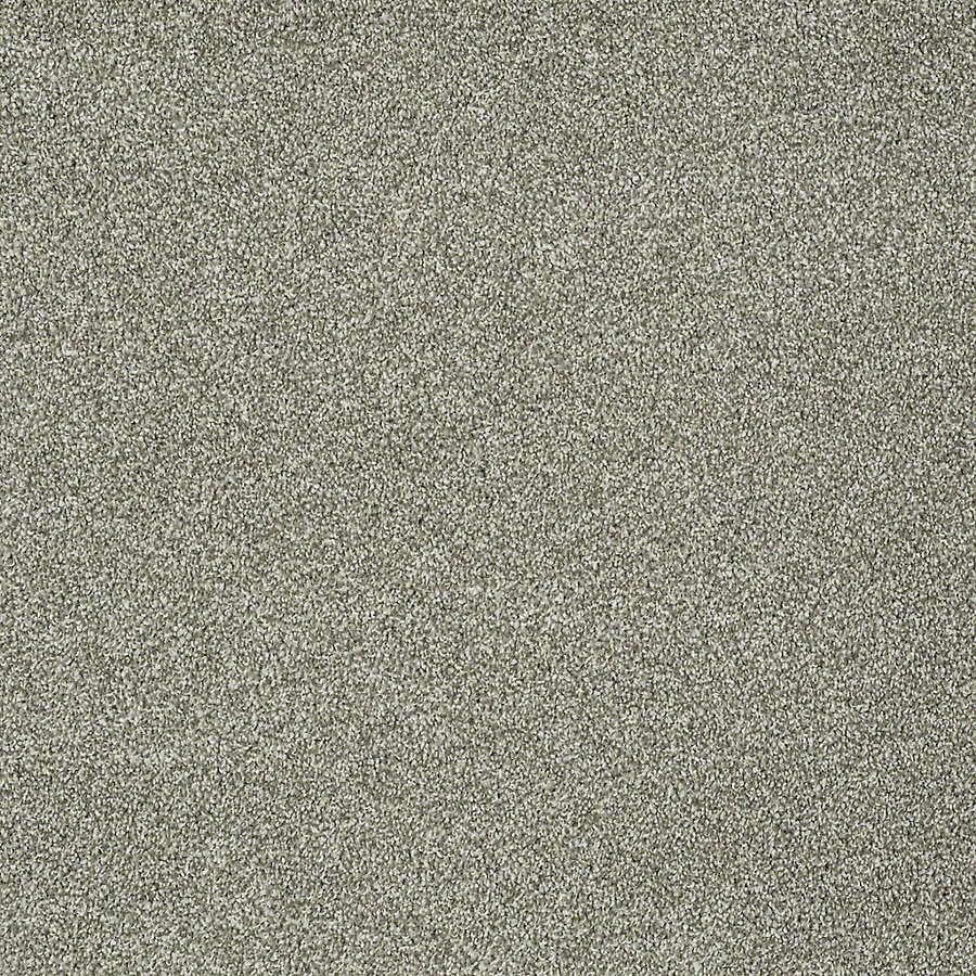 STAINMASTER PetProtect Bark to the Future II Tundra Carpet Sample
