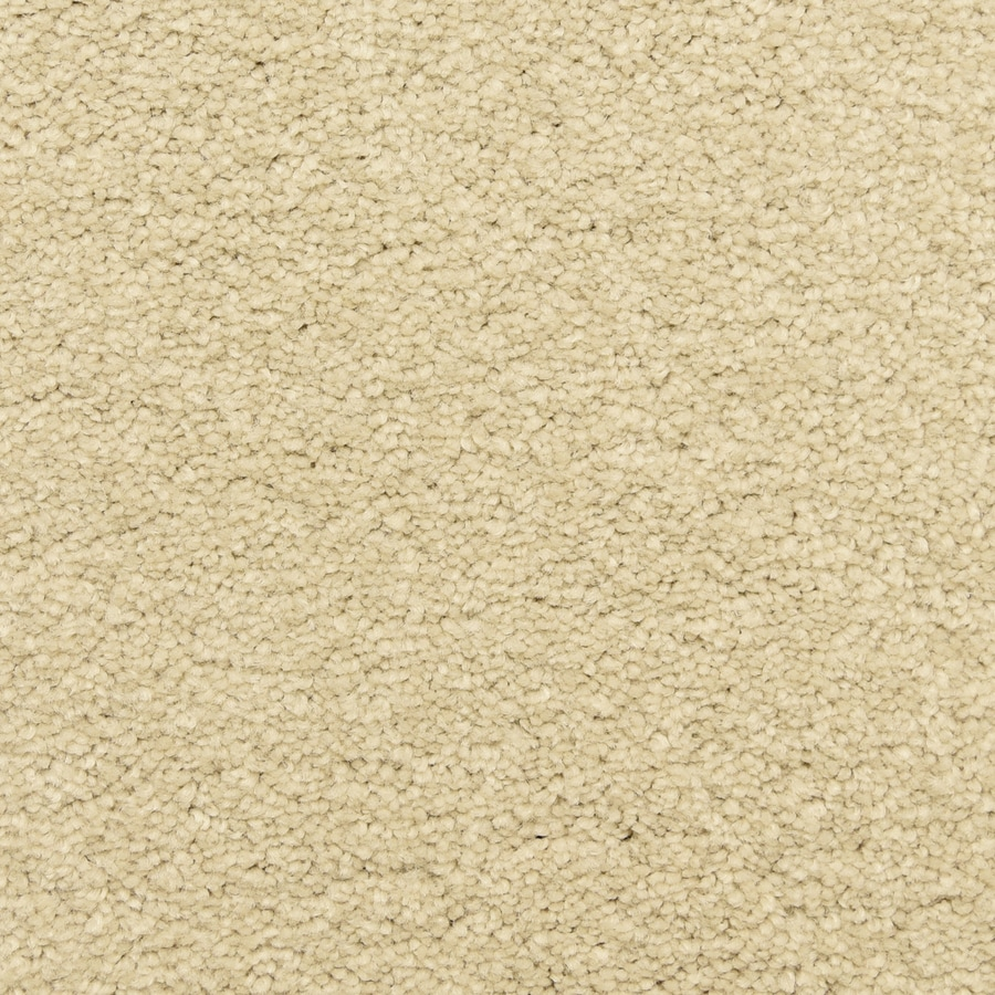 STAINMASTER LiveWell Classified Foam Carpet Sample