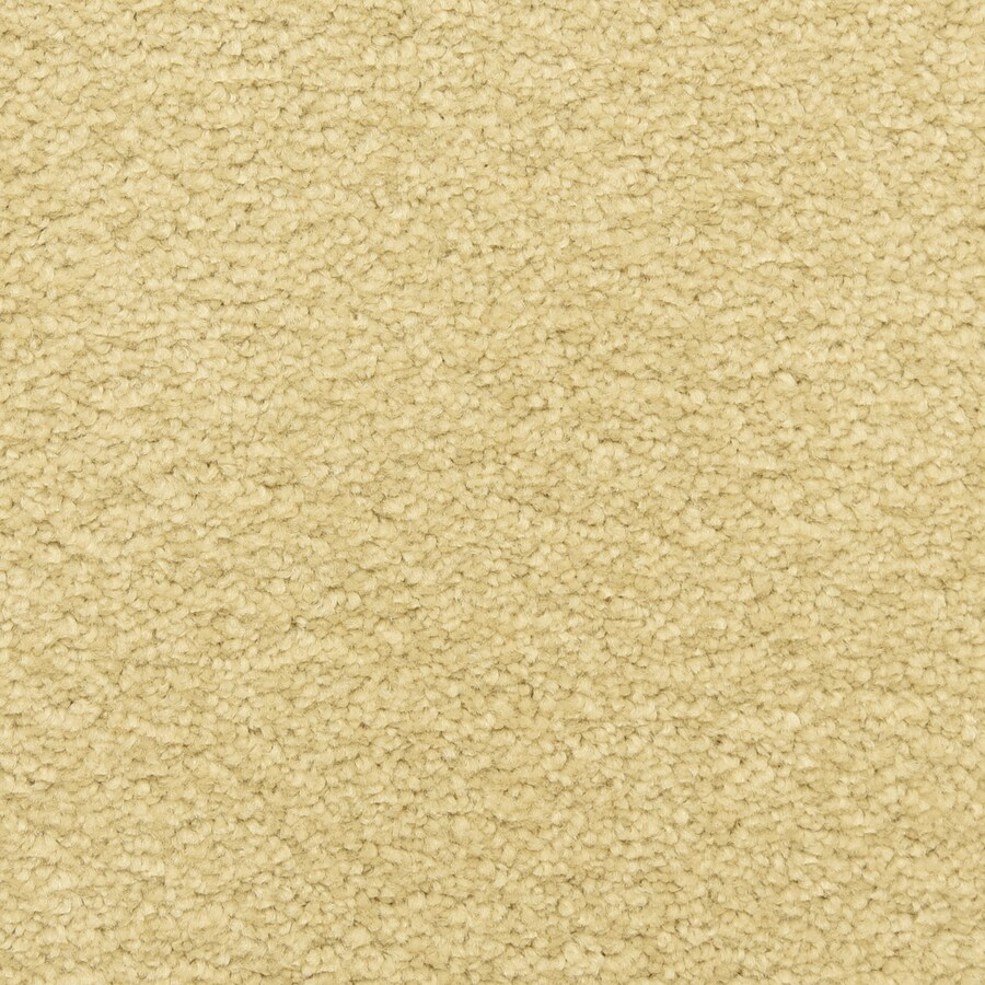STAINMASTER LiveWell Classified Sand Dollar Carpet Sample