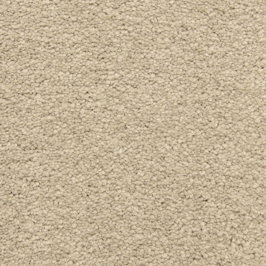STAINMASTER LiveWell Classified Bamboo Shoot Carpet Sample