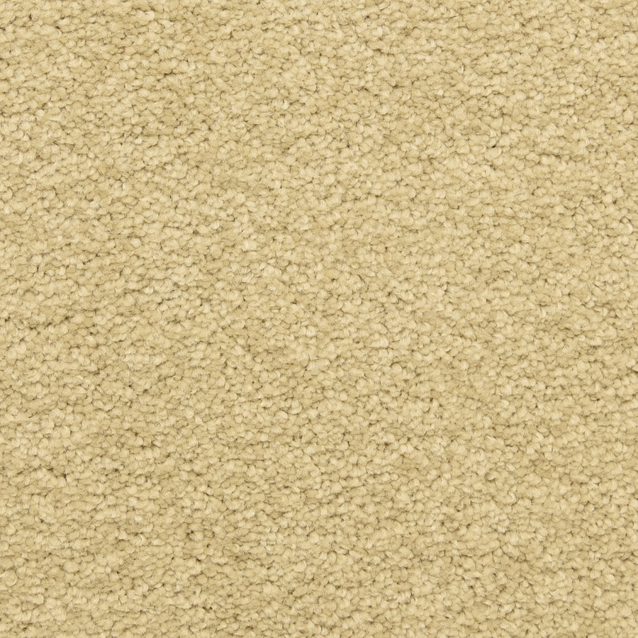 STAINMASTER LiveWell Classified Bella Mia Carpet Sample