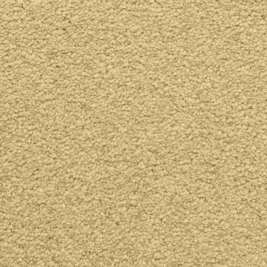 STAINMASTER LiveWell Classified Breezeway Carpet Sample