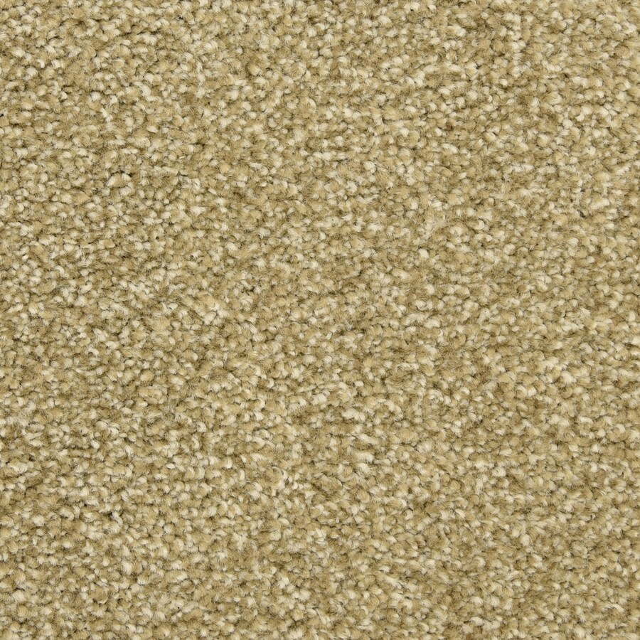 STAINMASTER LiveWell Classified Harbor Reef Carpet Sample