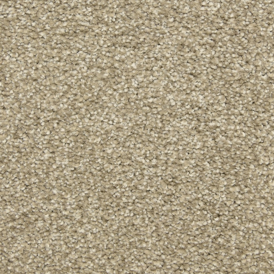 STAINMASTER LiveWell Classified Costa Carpet Sample