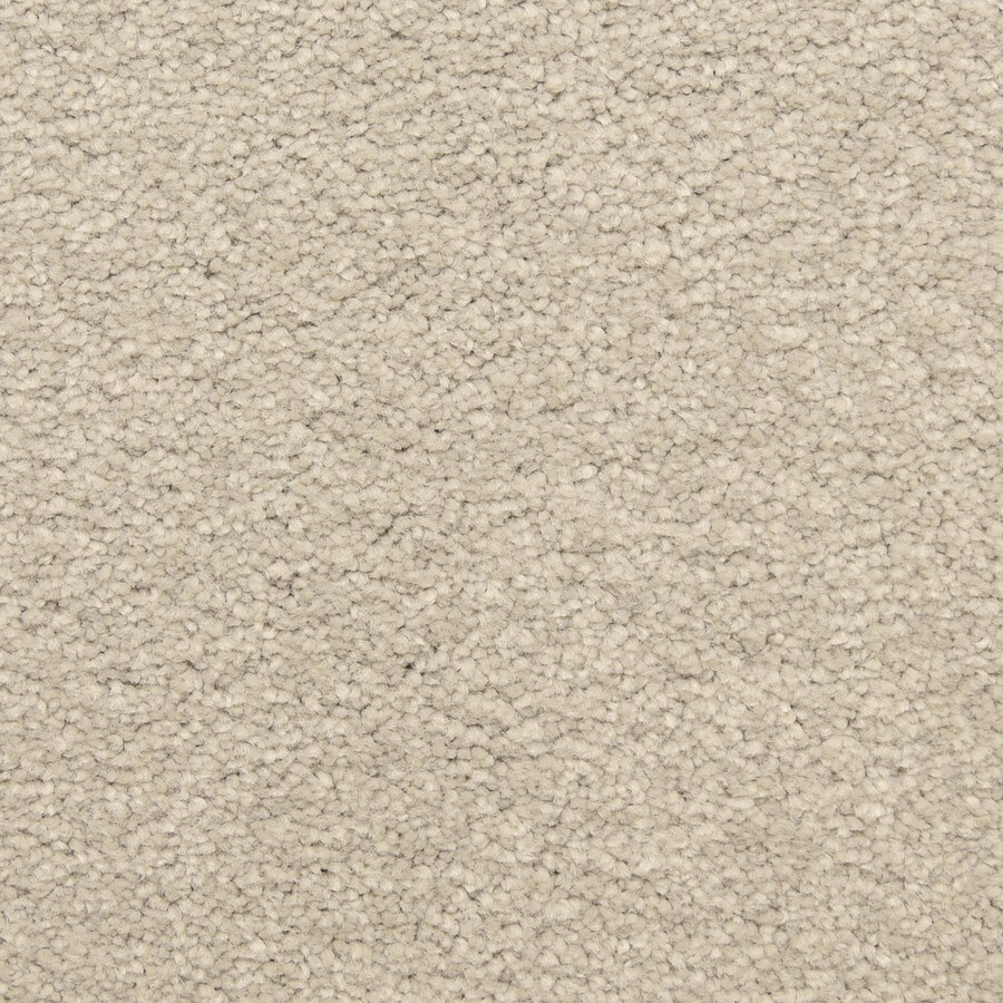 STAINMASTER LiveWell Classified Rain Master Carpet Sample