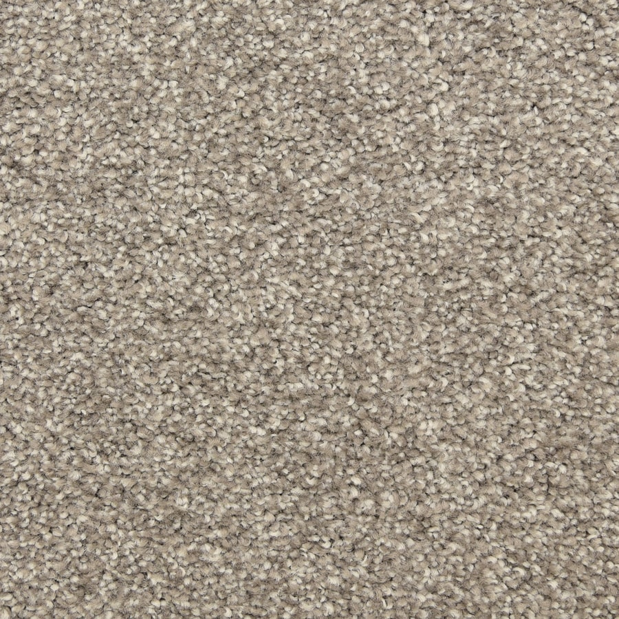 STAINMASTER LiveWell Classified Showstopper Carpet Sample